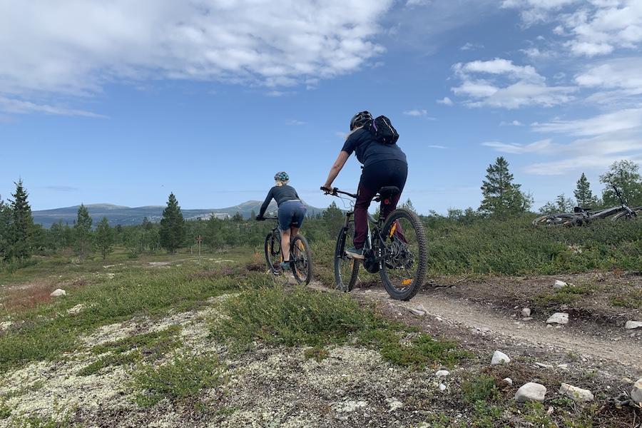 Cykling i Lofsdalen på Stenrutsleden